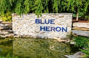 Blue Heron Medina Homes for Sale