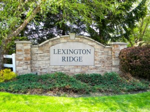 Lexington Ridge Homes for Sale