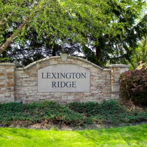 Lexington Ridge Medina Home Search