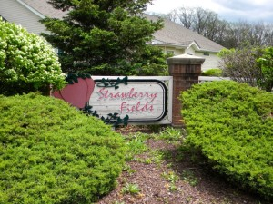 Strawberry Fields Medina Condos for Sale